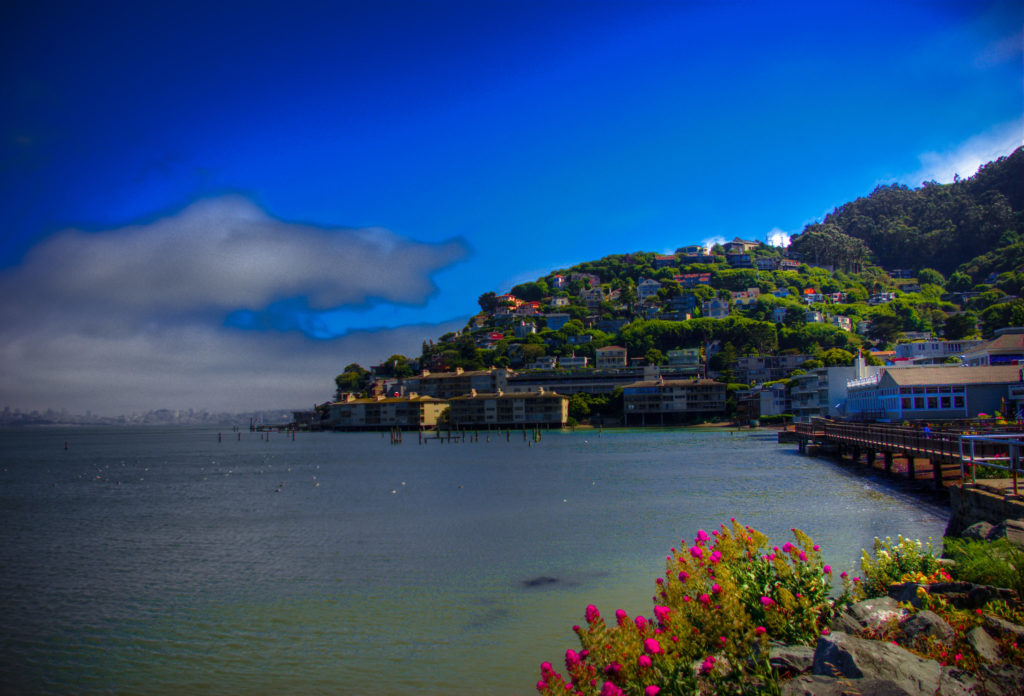 Day Trip from San Francisco to Sausalito